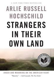 Strangers in Their Own Land Book Cover