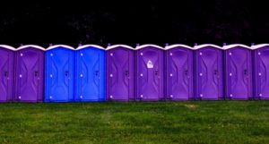 purple and blue portapotties in a line outside