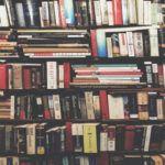 Best Historical Fiction Series. Books on brown wooden shelf. Photo by Ashim D'Silva on Unsplash. Link: https://unsplash.com/photos/P8gLaJ-PZL0
