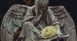 a gothic angel statue with a cream rose on its lap https://unsplash.com/photos/a8GewfTgpys