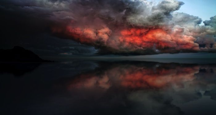 storm approaching on the horizon for ecological thrillers and horror