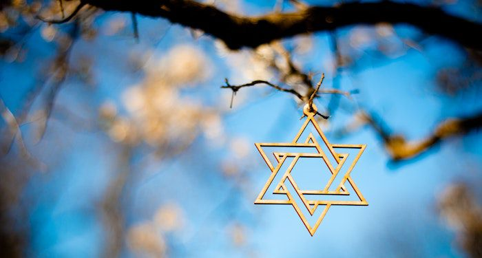 star of david hanging from tree branch